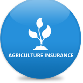agriculture-insurance